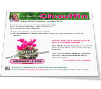 exemple de rédaction de newsletter